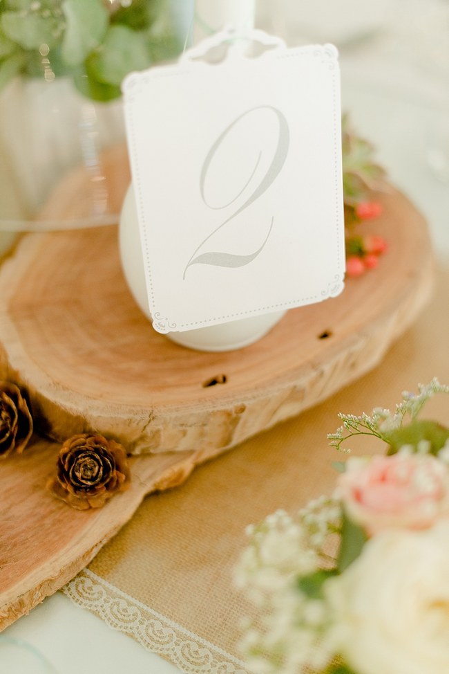 Babys Breath Lace Blush South African Wedding Louise Vorster Photography 011