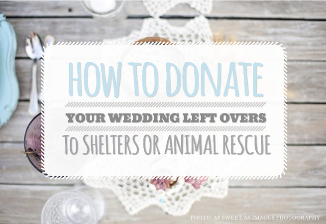 How to Donate Wedding Leftovers to Shelters or Animal Rescue