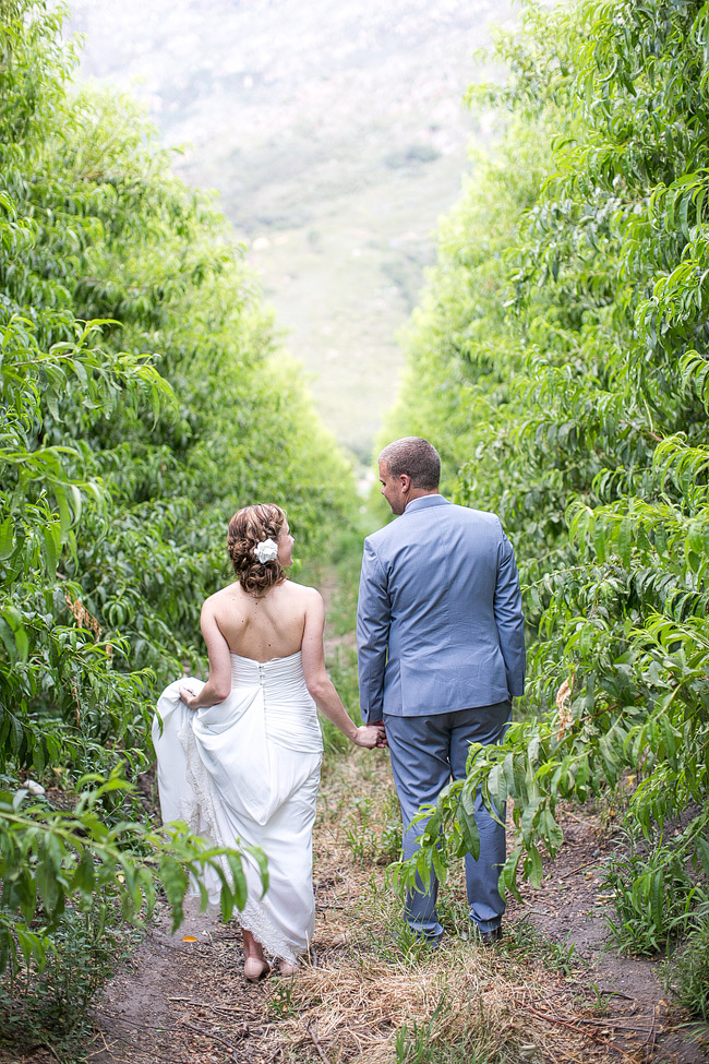 Mint Yellow Purple Tulip Garden Wedding -Olive Rock - Adene Photography