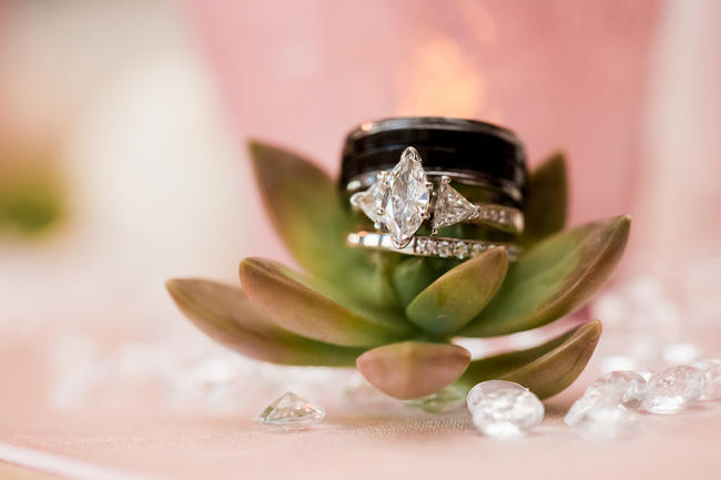 Wedding Rings on Succulent // Rustic Country Wedding in Blush Navy // Meet The Burks Photography