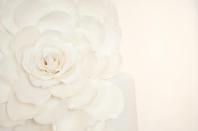 Crisp White Green Silver Summer Garden South African Wedding - Samantha Du Toit Photography (17)