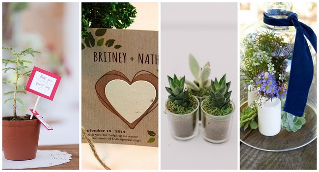 Gifts For Wedding Sponsors: 18 Cute And Thoughtful Eco-Friendly Wedding Favor Ideas