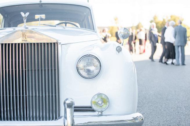 Vintage-Inspired White Glamorous Wedding Wedding - Haley Photography