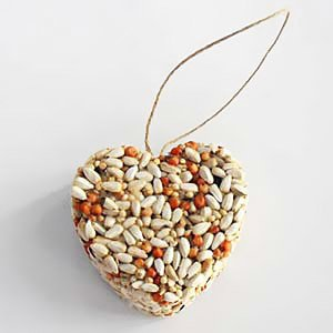 eco friendly bird seed wedding favor