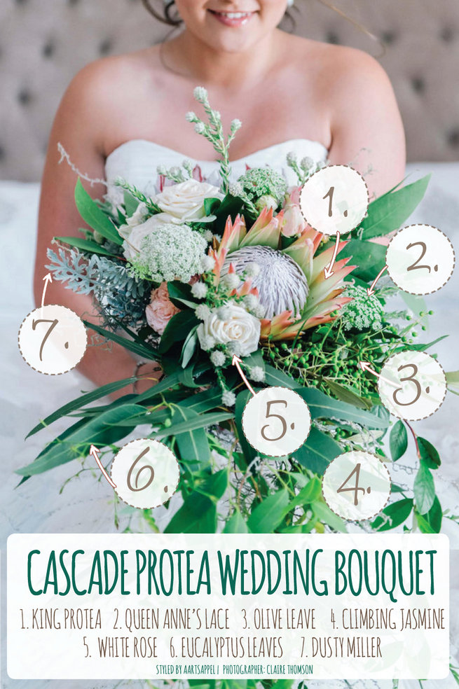 Cascading Protea Bouquet Recipe: King Protea, Queen Annes Lace, Climbing Jasmine Vines, Eucaltyptus and more. Full recipe in article. Photo by Claire Thomson, design by Aartsappel