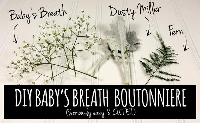 Easy DIY Babys Breath Boutonniere Tutorial