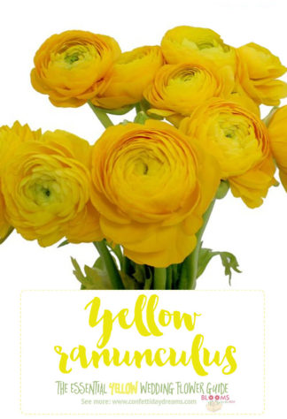 Light Yellow Flowers - Yellow Ranunculus