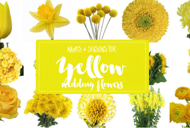 Names and Types of Yellow Wedding Flowers with Pics + Flower Tips