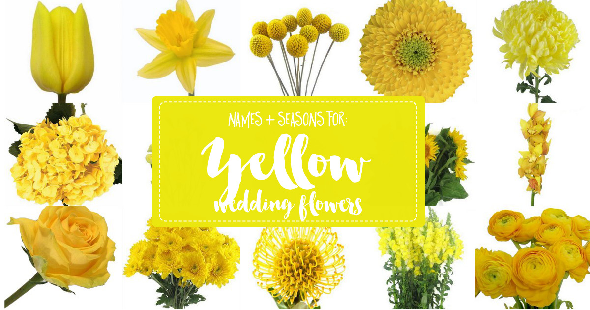 Names and Types of Yellow Wedding Flowers