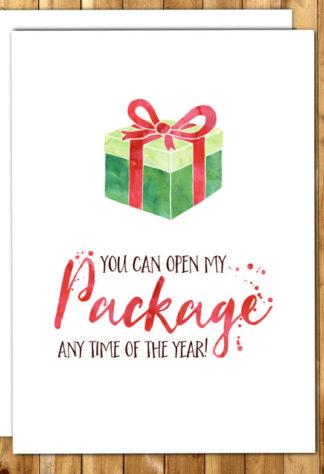 Cheeky Fiance Christmas Cards