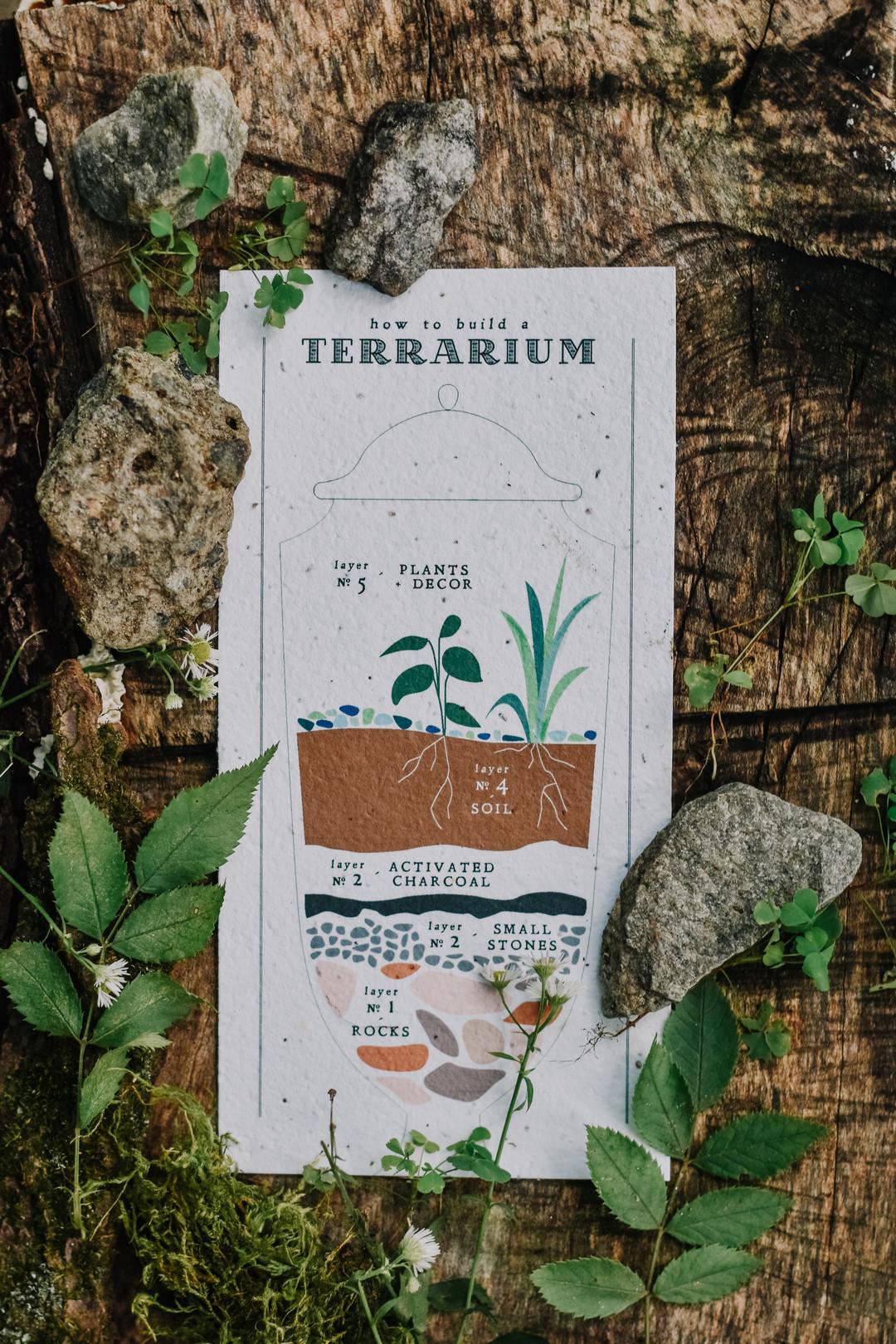 How to make a terrarium.
