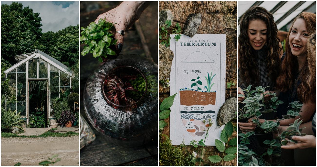 Sustainable vegan greenhouse bachelorette