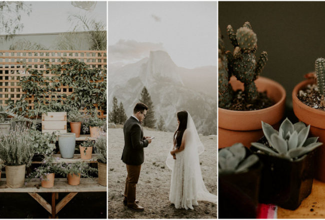 Vegan Taqueria Zero Waste Wedding