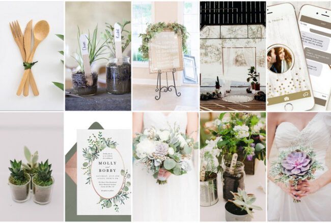 50+ Beautiful Eco-Friendly, Zero Waste + Sustainable Wedding Ideas