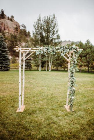 Eucalyptus greenery for wedding arch