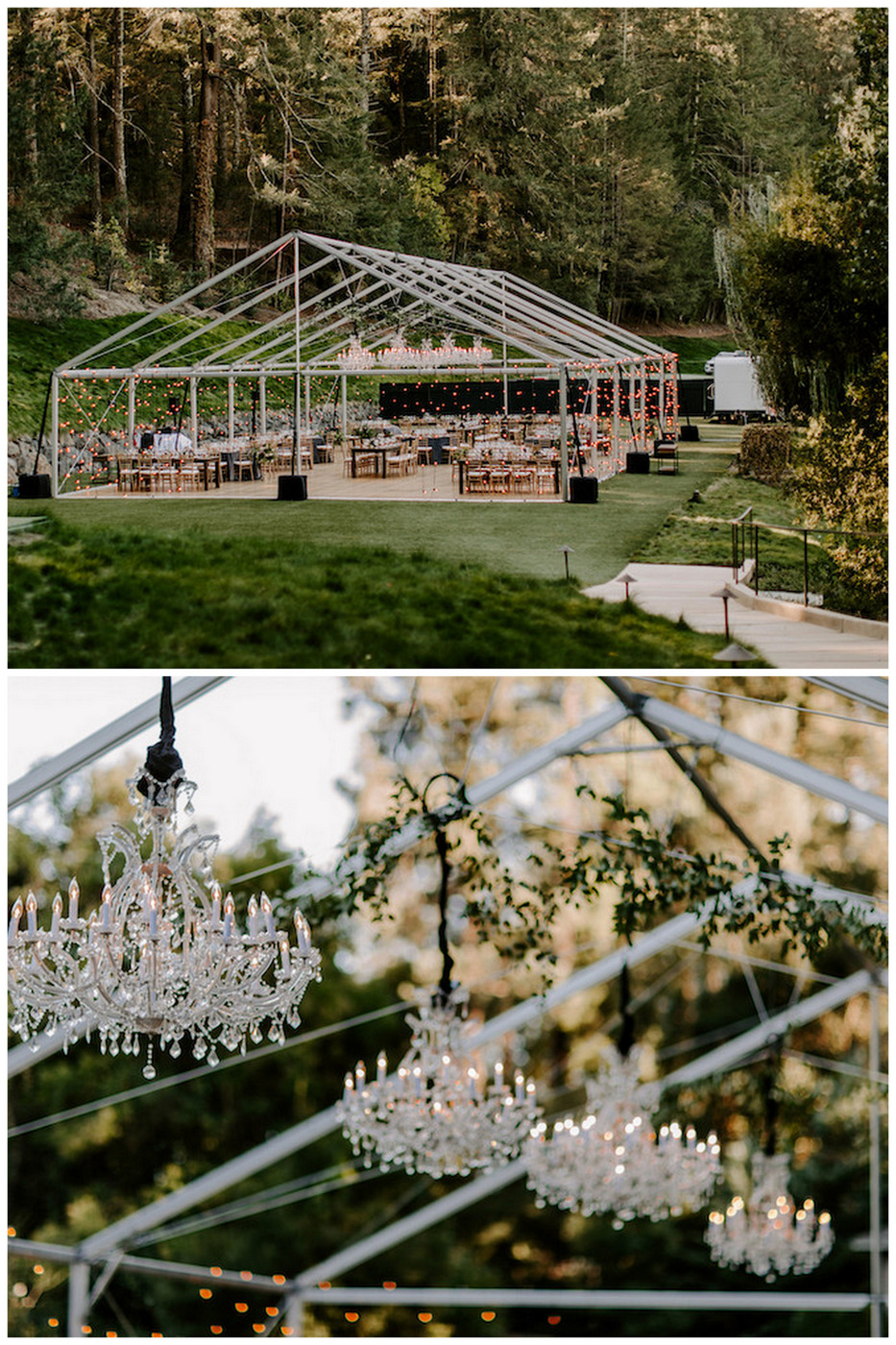 Enchanted Garden Wedding in Modern, Romantic Jewel Tones