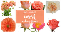 Coral Wedding Flower types