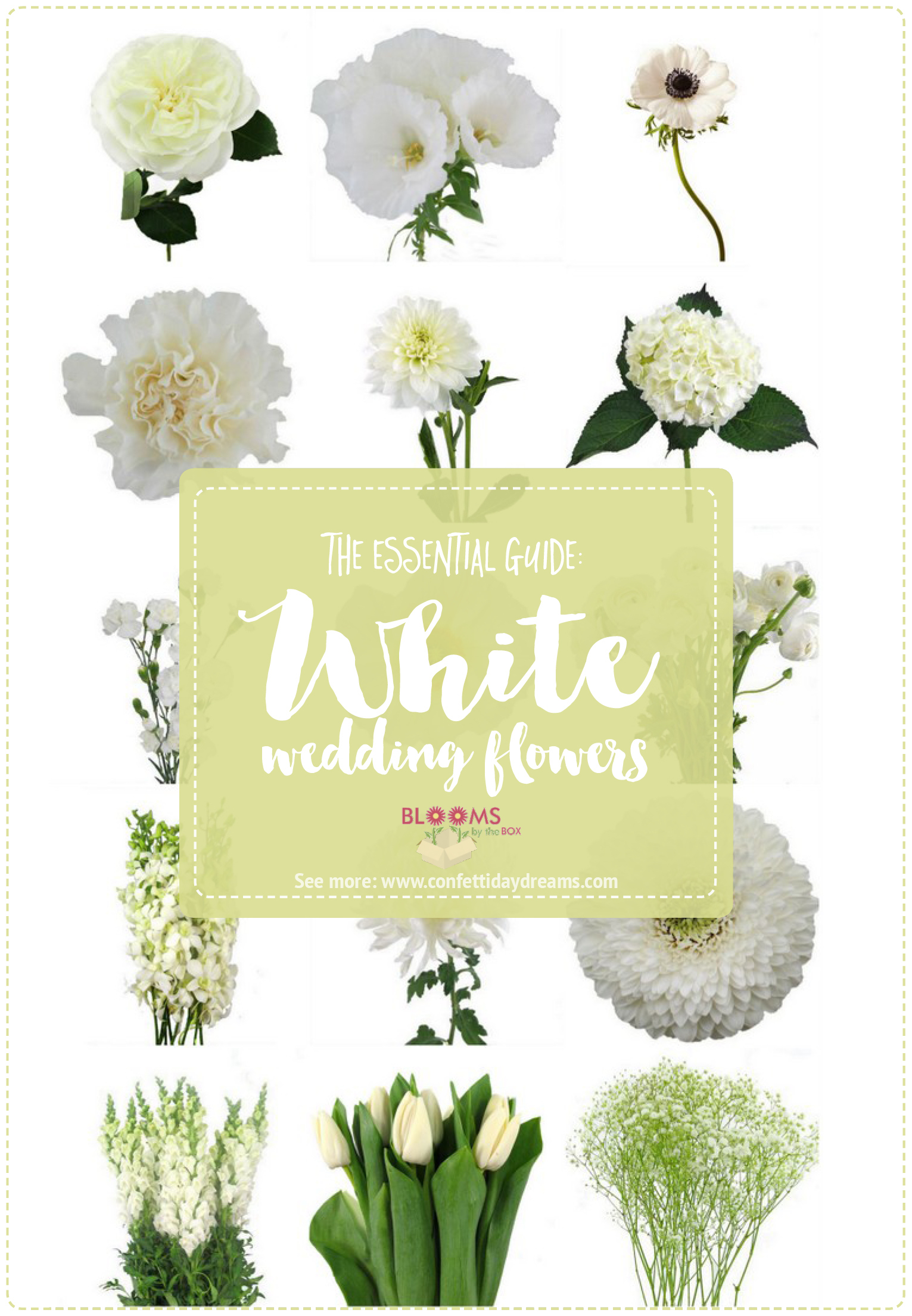 White Flowers Names Wedding Types
