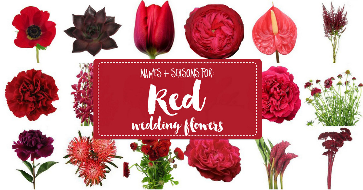 Names and Types of Red Wedding Flowers