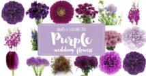 Purple Wedding Flowers Names and Seasons
