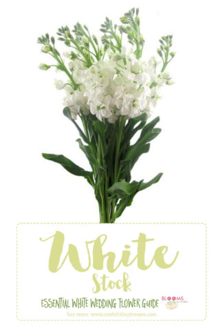 White Wedding Flowers Types Of