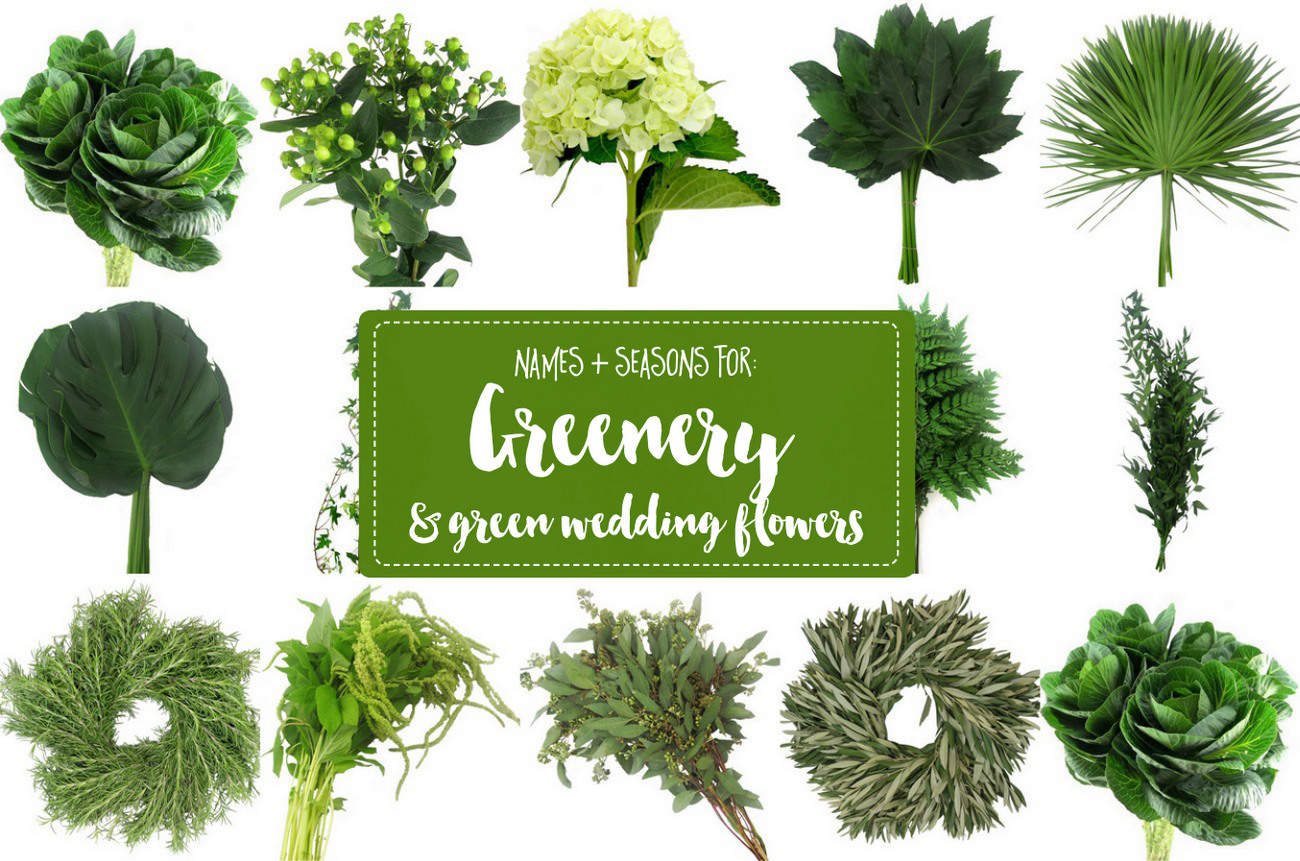 "How to Use The Green ""Greenery"""