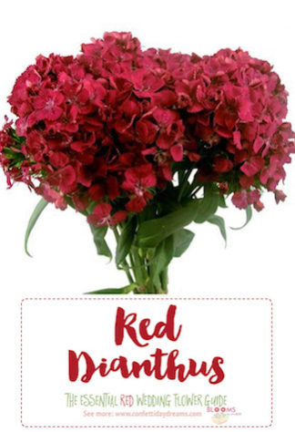 Types of red flowers ...