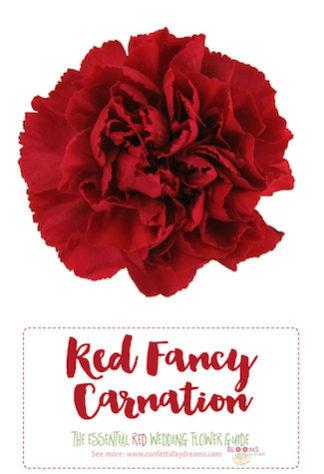 Types of red flowers Types of red flowers